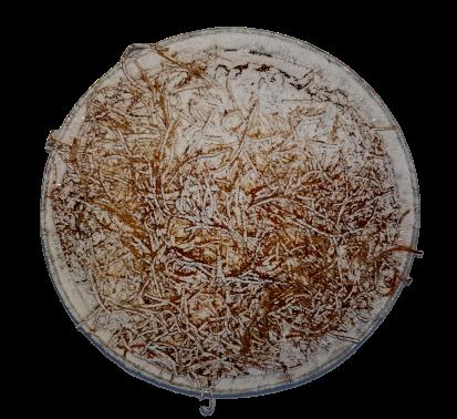 torta-di-tagliatelle-1-kg